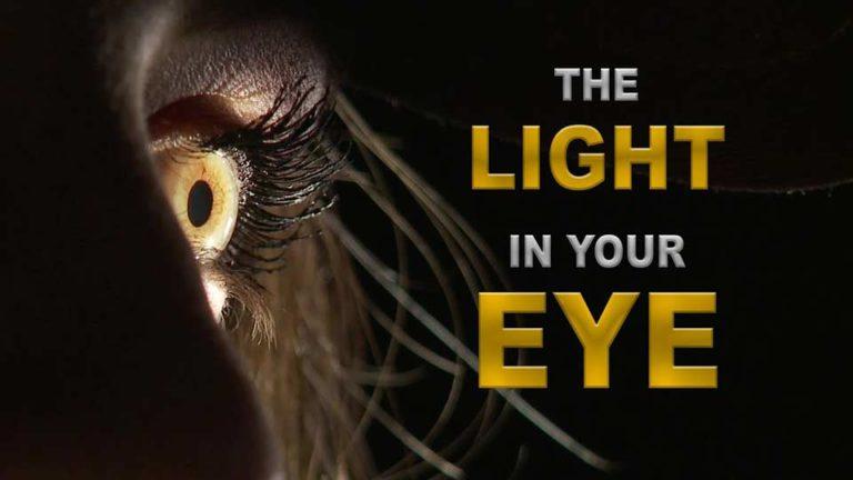 dedolight the light in your eye